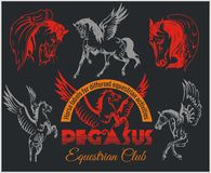 Pegasus and horses vintage labels, badges Stock Images