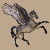 Pegasus le cheval à ailes Photographie stock libre de droits