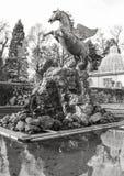 Pegasus springbrunn i de Mirabell trädgårdarna i Salzburg, Österrike Royaltyfria Bilder