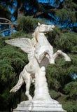 Pegasus statue, in the Boboli Garden, Florence Stock Image