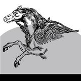 Pegasus Vector Illustration black and white Stock Photo
