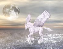Pegasus on a wonderful seascape Stock Image