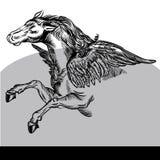 Pegaza Wektorowy Ilustracyjny czarny i biały zdjęcie stock