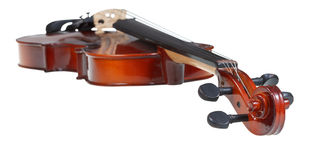 Pegbox of classical wooden violin close up Stock Images
