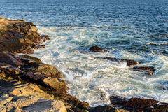 Peggys Cove shoreline Royalty Free Stock Photo