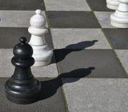 Pegni in bianco e nero di scacchi Immagine Stock Libera da Diritti