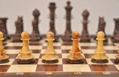 Pegni sulla scheda di scacchi Fotografia Stock