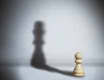 Pegno dell'ombra di scacchi fotografia stock