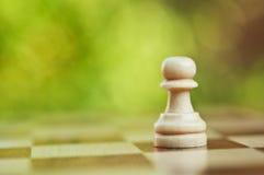Pegno solo di scacchi immagini stock libere da diritti