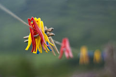 Pegs. On clothes lline. Shallow depth of field Royalty Free Stock Image