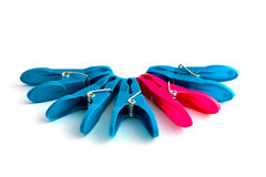 Pegs. Colourful blue and pink clothes pegs Royalty Free Stock Photos