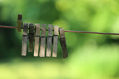 Pegs on the cord Royalty Free Stock Photo
