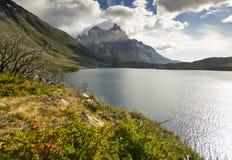 Pehoe del lago Torres del paine nella Patagonia con le pareti della roccia Fotografie Stock