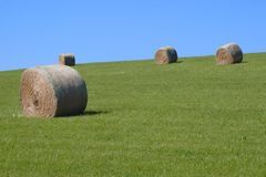 PEI Haybales 2 Royalty Free Stock Photography