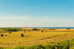 PEI rural scene Royalty Free Stock Image