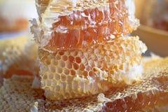 Peigne empilé de miel Photographie stock libre de droits