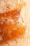 Peignes de miel Photos stock