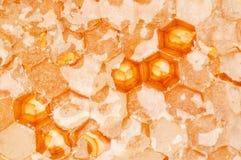Peignes de miel Image libre de droits