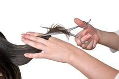 Peinado Fotografía de archivo libre de regalías