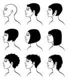 Peinado Imagenes de archivo
