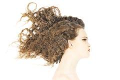 Peinado de la mujer del pelo rizado Imágenes de archivo libres de regalías