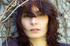 Peinado sensual hermoso de la mujer Foto de archivo