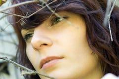 Peinado sensual hermoso de las mujeres Imagen de archivo libre de regalías