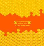 Peine de la miel Fotografía de archivo libre de regalías
