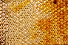 Peine de la miel Foto de archivo