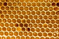 Peine de la miel con la miel como fondo Fotos de archivo