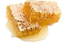 Peine de la miel en un fondo blanco Imagen de archivo libre de regalías