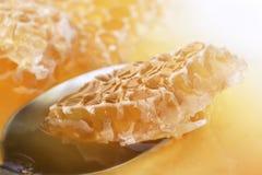 Peine de la miel en una cuchara Imágenes de archivo libres de regalías