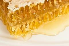 Peine de la miel en una placa blanca Fotografía de archivo