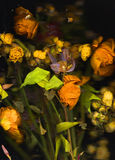 Peine et vieilles fleurs photographie stock