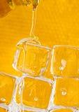 Peine frío de la miel Imagen de archivo libre de regalías