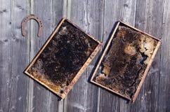Peine viejo de la abeja del panal dos y herradura oxidada en la pared Imágenes de archivo libres de regalías