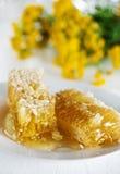 Peines de la miel con la miel y las flores amarillas Foto de archivo libre de regalías