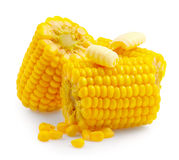 Peines del maíz aislados en blanco Maíz dulce con mantequilla Fotos de archivo