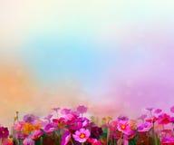 Peinture à l'huile colorée abstraite rouge, fleur rose de cosmos illustration libre de droits