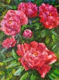 Peinture à l'huile - pivoine de floraison Images stock
