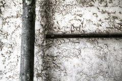 Peinture épluchée sur un mur Images libres de droits