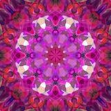 Peinture belle Mandala Background florale colorée abstraite de Digital Photo stock