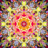 Peinture belle Mandala Background florale colorée abstraite de Digital Photo stock