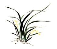 Peinture chinoise d'encre d'orchidée Illustration de Vecteur