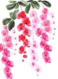 Peinture chinoise d'encre des orchidées Images stock