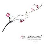 Peinture chinoise - illustration fabriquée à la main naturelle comme un zen de Sakura d'aquarelle de vecteur illustration de vecteur