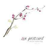 Peinture chinoise - illustration fabriquée à la main naturelle comme un zen de Sakura d'aquarelle de vecteur illustration libre de droits