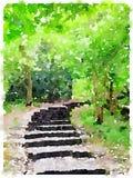 Peinture d'aquarelle d'un chemin dans les bois Photo libre de droits