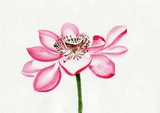 Peinture d'aquarelle de fleur de Lotus illustration de vecteur