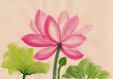 Peinture d'aquarelle de fleur de Lotus Images libres de droits